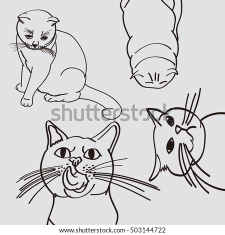 Hand drawn outline cat on grey back group