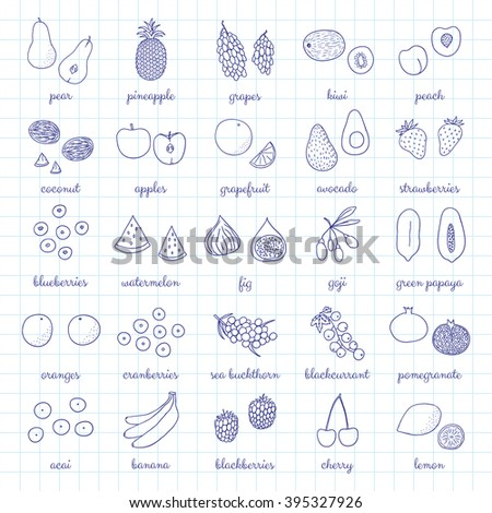 Hand drawn outline fruits and berries isolated on graph paper. Pineapple, strawberry, acai, goji, kiwi, grapefruit, banana, blackberry, sea buckthorn, cherry, lemon, blackcurrant, papaya, grape, peach - stock vector