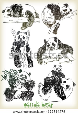 hand drawn panda bear vector set - stock vector