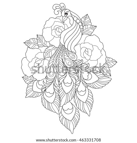 hand drawn peacock and rose flower for color book for adult other decorations isolated on