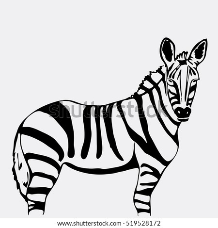 Hand-drawn pencil graphics, zebra. Engraving, stencil style. Black and white logo, sign, emblem, symbol. Stamp, seal. Simple illustration. Sketch.