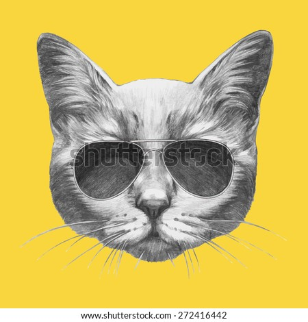 Hand drawn portrait of Cat with sunglasses. Vector isolated elements. - stock vector