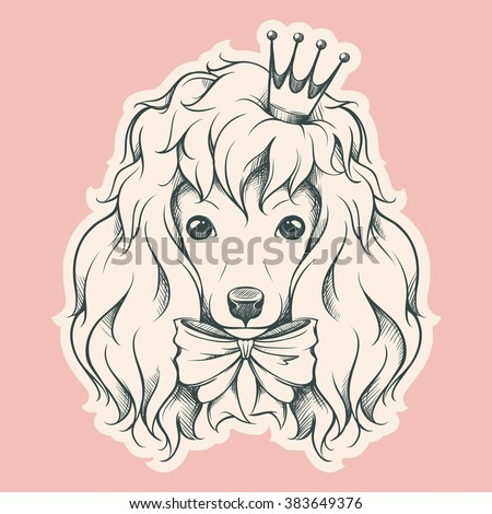 Hand drawn portrait of Poodle with crown and bow. Vector animal dog illustration.