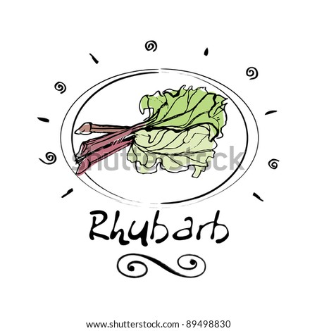 hand drawn rhubarb in vignette - stock vector