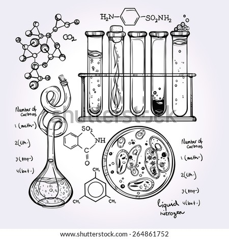 Hand drawn science beautiful laboratory icons sketch. . Vector illustration.Back to School. Science lab objects doodle style sketch, Laboratory equipment.   - stock vector
