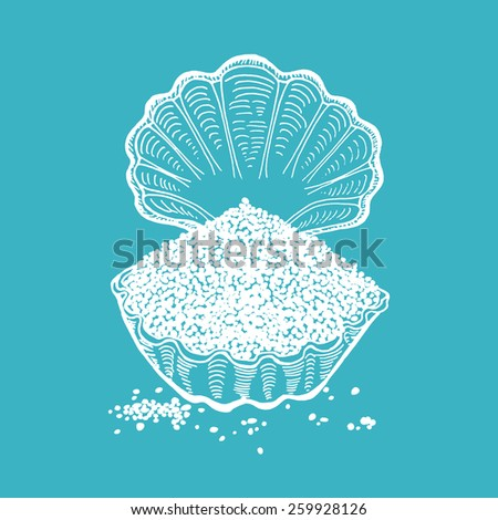 Hand drawn seashell with salt  - stock vector