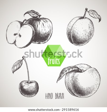 Hand drawn sketch style fruits set. Apple with slice of apple, apricot, cherry and peach. Organic food, farm fresh fruit. Vintage style illustration - stock vector