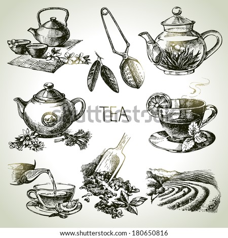 Hand drawn sketch vector tea set  - stock vector