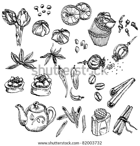 Hand-drawn spice and sweet collection - stock vector