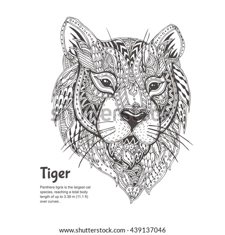 Hand-drawn tiger with ethnic floral doodle pattern. Coloring page - zendala, design for spiritual relaxation for adults, vector illustration, isolated on a white background. Zen doodles.