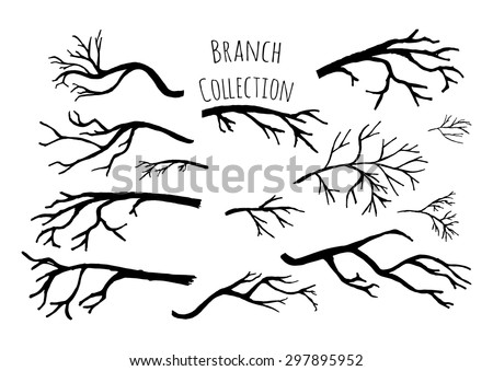 Hand drawn tree branches collection. Vector illustration.  - stock vector