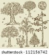 Hand drawn trees isolated, sketch, vintage style trees set - stock photo