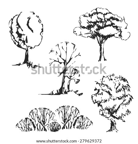 Hand drawn trees set. Isolated and vintage  sketch trees. - stock vector