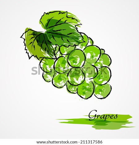 Hand drawn vector green grape ripe fruit on light background - stock vector