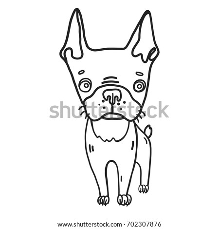 hand drawn vector illustrated coloring page of cute boston terrier dog cartoon black and white - Boston Terrier Coloring Page