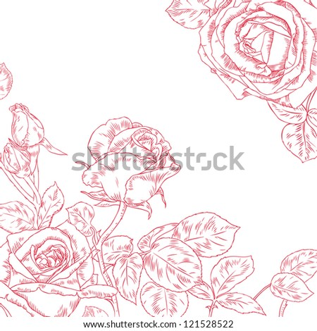 Hand drawn vector illustration of beautiful roses - stock vector