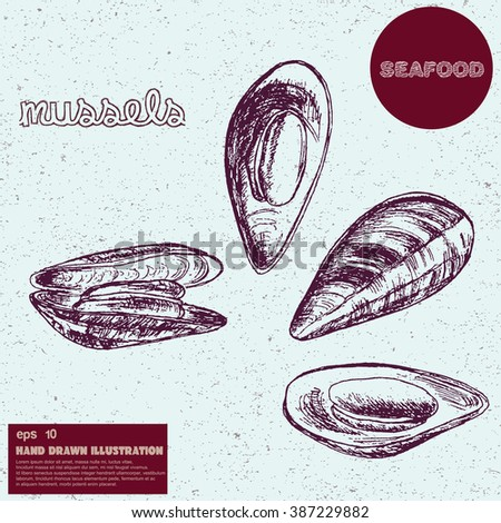 Hand drawn vector illustration of mussels. Vintage sketch of seafood.