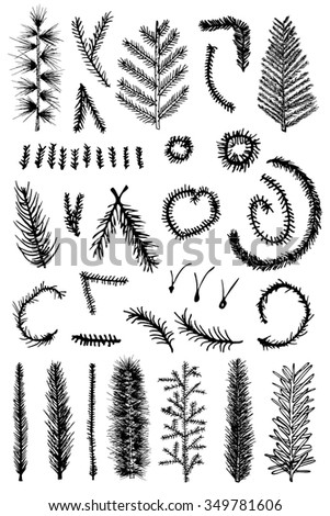 Hand drawn vector set of fir branches, christmas tree, isolated on white background.   - stock vector