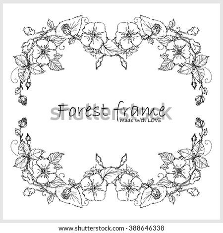 Hand Drawn Vector Vintage Square Corner Frame Forest Or Garden Herb Flowers