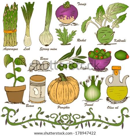 hand drawn vegetable set 5 - stock vector