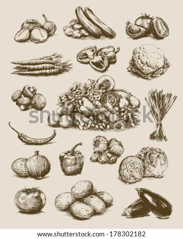 Hand Drawn Vegetables Set - stock vector