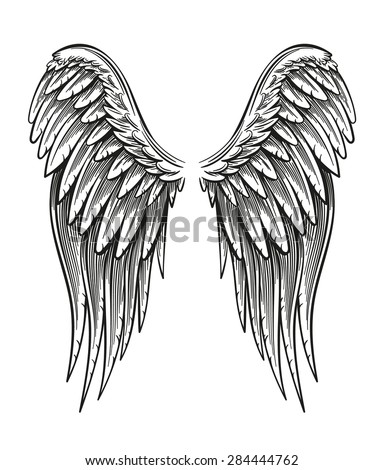Hand drawn vintage closed wings vector illustration isolated on white. - stock vector
