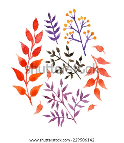 Hand Drawn vintage floral elements. Set of flowers and plants. - stock vector