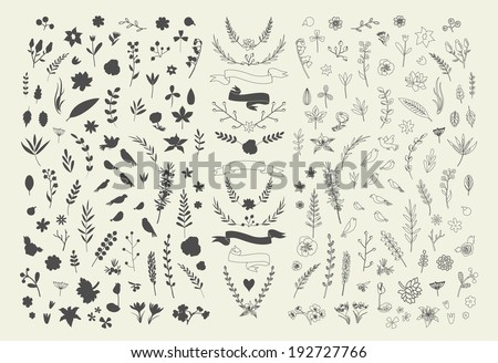 Hand Drawn vintage floral elements. Set of flowers. Decorative elements - stock vector