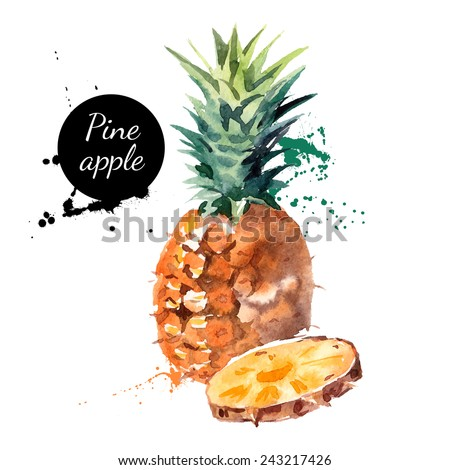 Hand drawn watercolor painting on white background. Vector illustration of fruit pineapple - stock vector