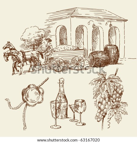 hand drawn wine collection - stock vector