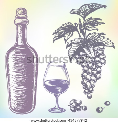 Hand-drawn wine vector. Grape wine or beverage drink set. Ink drawn grape wine illustration with wine, grape, wine bottle, wine glass, grapes, grape bunches, grape berries and grape leaves. - stock vector