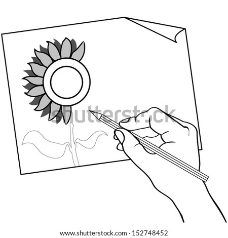 hand holding color pencil drawing sunflower outline vector