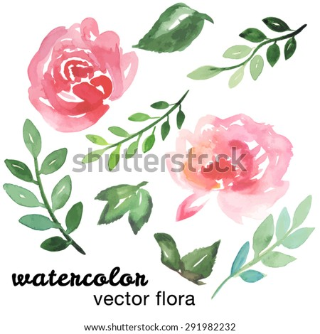 Hand painted watercolor floral set. Vector illustration. Colorful floral collection with leaves and flowers, drawing watercolor. Spring or summer design for invitation, wedding or greeting cards, etc - stock vector