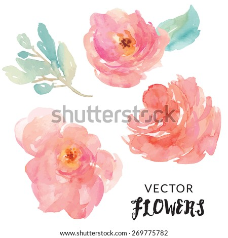 Hand Painted Watercolor Flower Vector. Watercolor Vector Flowers in Pink and Red - stock vector