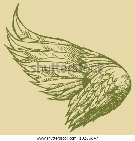 Hand Sketched Wings - stock vector