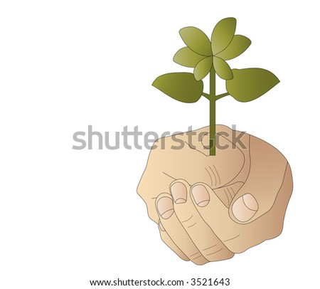 hand with budding plant and copy space vector - stock vector