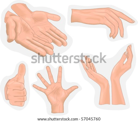 hands - stock vector