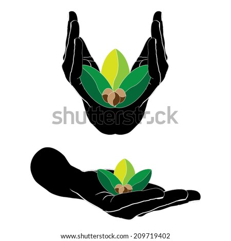 Hands holds sprout. - stock vector