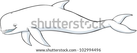 Happy Beluga Whale Cartoon - stock vector