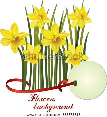 Happy easter cards illustration with flowers narcissus background. Yellow daffodil - stock vector