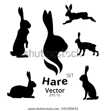 Hare set, vector, eps 10 - stock vector