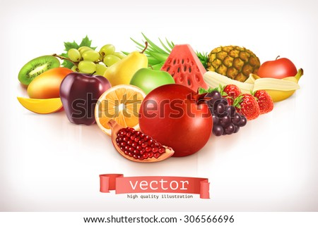 Harvest juicy and ripe fruit, vector illustration isolated on white - stock vector