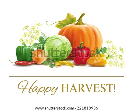 Harvest time vegetable composition on white. Vector eps 10. - stock vector