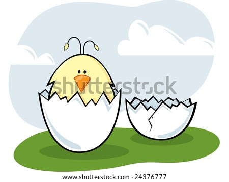 Hatched Chick - stock vector