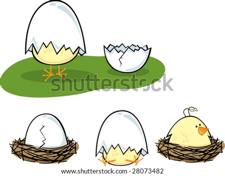 Hatching baby chicken in various stages and poses - stock vector