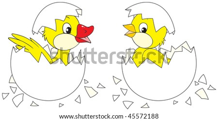 Hatching chick and duckling - stock vector