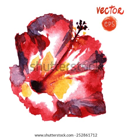 Hawaiian wedding flowers hibiscus. diverse Tropical Flowers. Isolated on white background. single watercolor flower. vector red exotic hibiscus. paradise hibiscus red. painted hibiscus  - stock vector