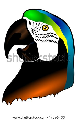 Head of a parrot of Ara isolated on the white background - stock vector