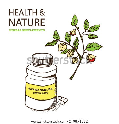 Health and Nature Supplements Collection. Ashwagandha - Withania Somnifera - stock vector