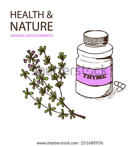 Health and Nature Supplements Collection.  Thyme - Thymus vulgaris - stock vector
